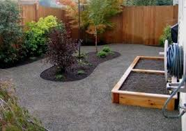 backyard ideas for dogs dog friendly backyards northwest botanicals inc seattle