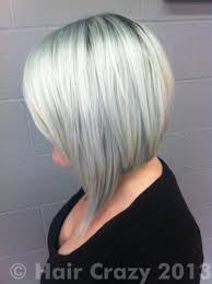 pravana silver hair color buy vivids silver pravana hair dye haircrazy of pravana silver