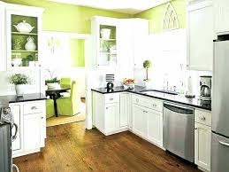 kitchen cabinet painting ideas pictures kitchen cabinets doors creative painted ideas colored colors