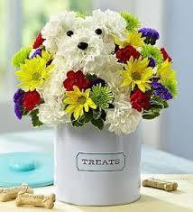 Dog Flower Arrangement Pierson U0027s Flower Shop U0026 Greenhouses Inc Blm Adogable Cedar Rapids