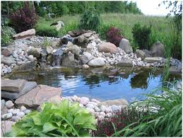 backyards chic natural pond landscaping home a garden ideas