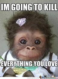Monkey Meme - cute monkey wait wh by nomizz meme center
