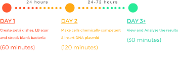 amino labs