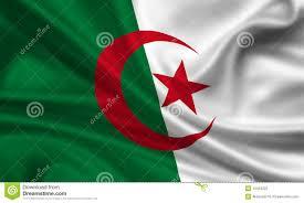 Algerian Flag Flag Of Algeria Stock Illustration Image Of Wave State 15423222