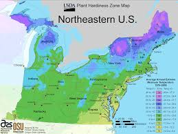 United States East Coast Map by North East Us Plant Hardiness Zone Map U2022 Mapsof Net