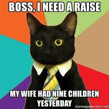 Funny Cat Meme Pictures - the 12 funniest cat memes on the planet