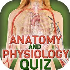 Quiz Anatomy Human Body Anatomy Quiz Android Apps On Google Play