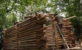 wood cabin this timelapse of a single handedly building a log cabin
