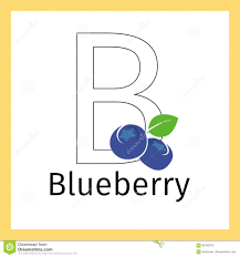 blueberry and letter b coloring page stock vector image 85342815