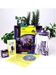 Indoor Garden Kit Amazon Com Indoor Herbal Tea Garden Kit Grow Herb Tea Herbs