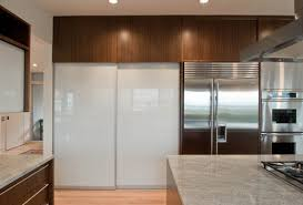 Pantry Cabinet Doors by Pantry Cabinet Modern Pantry Cabinet With Dream Kitchen Cupboard