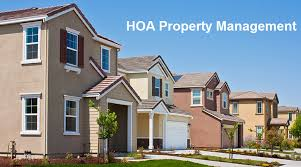 hoa management services intempus property management