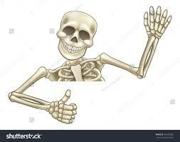 skelton halloween skeleton halloween cartoon character peeping over stock vector