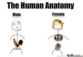 Super Happy Meme Face - human anatomy by cattivo meme center