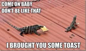 Lizard Toast Meme - my friend sent me this i laughed harder than i probably should