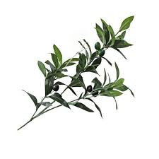 artificial european olive tree branches with olive fruit leaves for