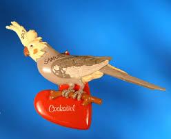 bird cockatiel animal categories bird and animal