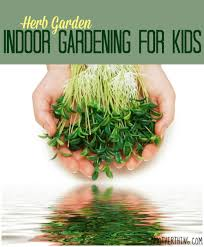 indoor gardening for kids 229 best images about exploring our