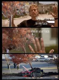 Your Face Meme - tree in my face paul walker s death know your meme