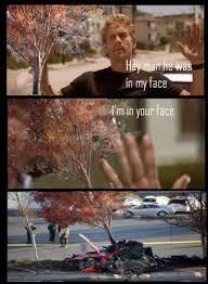 Tree Meme - tree in my face paul walker s death know your meme