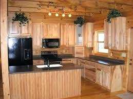 hickory kitchen cabinet hardware interior rustic cabinet gammaphibetaocu com