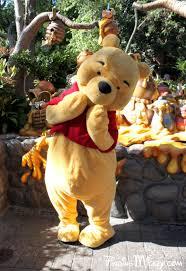 winnie pooh critter country disneyland resort costumed