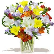 Flowers Direct Flowers Direct Uk Cheap Flower Bouquets