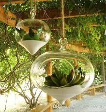 online cheap onion shape clear glass pots hanging air plant