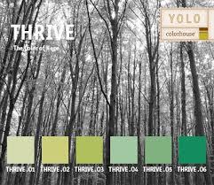 53 best colorhouse paint images on pinterest paint colours
