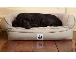 dog beds indoor u0026 outdoor dog beds