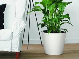 self watering indoor planters self watering window planters self watering flower pots
