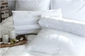 Pillow Top Mattress Pad For Crib Mattress Topper Awesome Pillow Top Mattress Topper Amazing