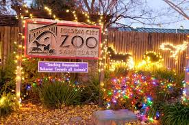 Zoo Lights Schedule by Holiday Light Displays Around The Sacramento Region The