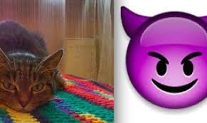 imagenes de animales whatsapp animales y sus correspondientes emoticonos