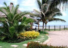 Front Yard Tree Landscaping Ideas Best Tropical Landscaping Ideas For Front Yard Designs U2014 Emerson