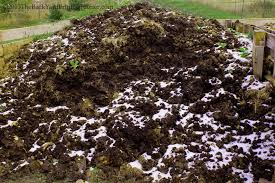 factors that affect the composting process stella otto the
