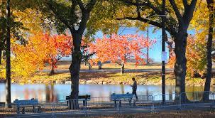 boston events november 2018 foliage thanksgiving nutcracker