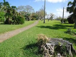 Bermuda Botanical Gardens Bermuda Botanical Gardens Great Runs