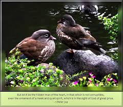 96 daily inspirational bible verse 1 peter 3 4 kjv u2026 flickr