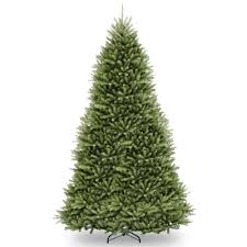 national tree company 14 ft kingswood fir pencil tree with clear