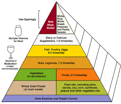 the food pyramid and other options military com