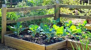 material options for raised beds redeem your ground