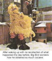 Hung Over Meme - big bird s cold hangover bertstrips know your meme