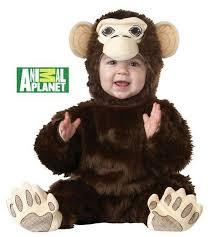 chimpanzee monkey chimp 18 24 months baby boy halloween costume