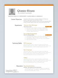 Resume Samples In Word 2007 Resume Work Resume Templates Word 2007 Could See A Layout Like