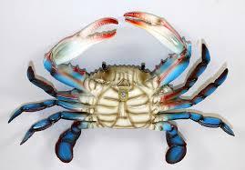 amazon com maryland blue crab beach tiki bar wall decor 6