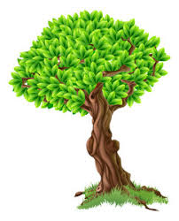illustration of a vine plant on the trunk of a tree royalty free