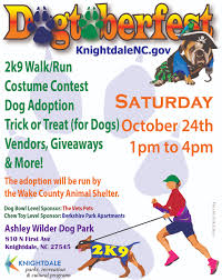 chapel hill mall halloween city weekend fun 12 things to do with kids in raleigh durham chapel hill