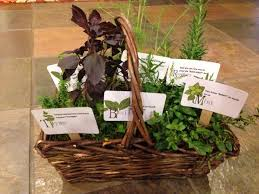 Gardening Basket Gift Ideas by Retirement Gift Herb Basket With Puns On The Labels Thyme Enjoy