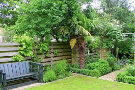 small garden design pictures small garden design ginkgo gardens